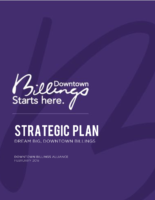 DBA Strategic Plan 2018